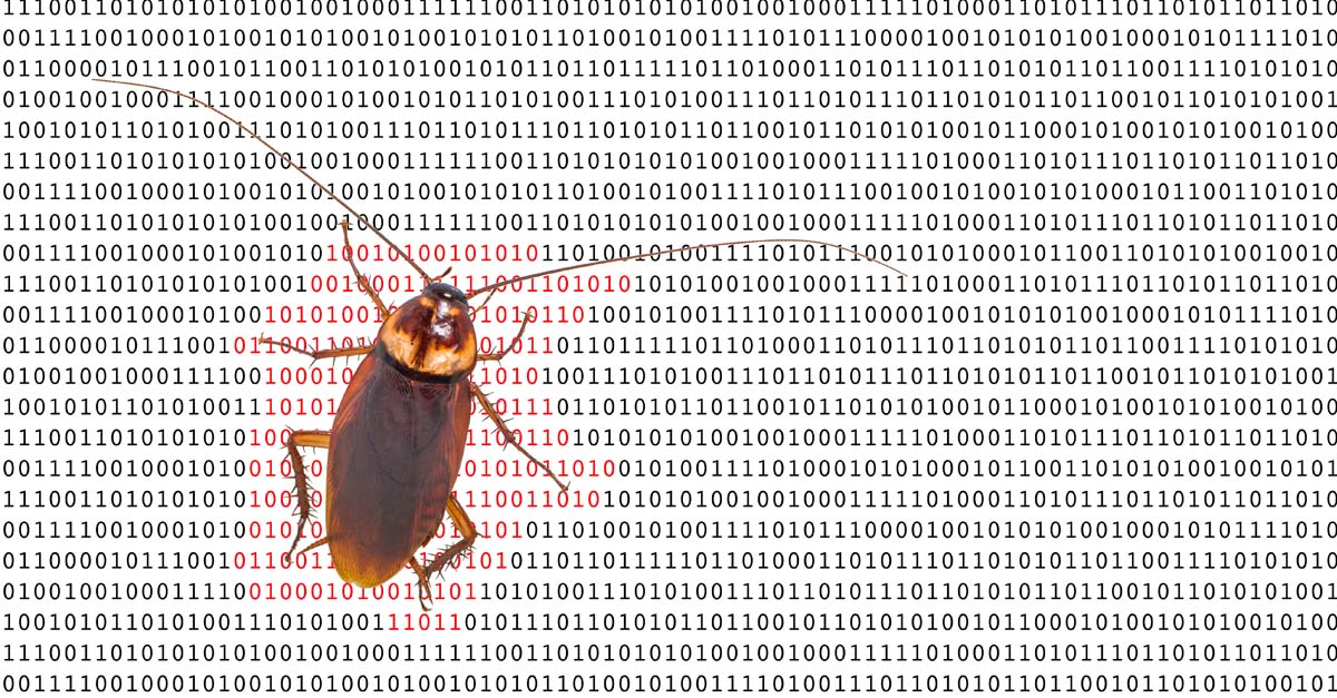 Testing for code bugs